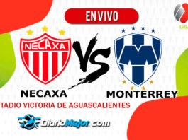 Necaxa-vs-Monterrey-En-VIVO-Liga-MX-Apertura-2019